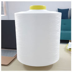 Sợi Polyester 300/96