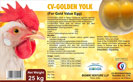 CV - Golden Yolk