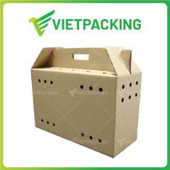 In thùng Carton Flexo