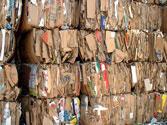 Thu mua phế liệu giấy carton