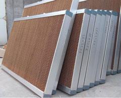 Hệ thống gió Cooling Pad