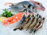 Hải sản đông lạnh  nhập khẩu