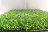 Cỏ nhân tạo sân vườn 2cm