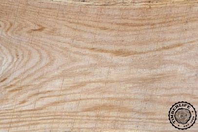 Gỗ sồi trắng - White Oak