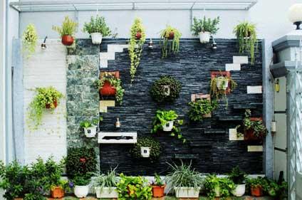 Thiết kế thi công vườn thẳng đứng