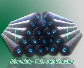 Màng chống thấm HDPE Vina Tân Á