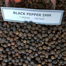 Black Pepper 5mm