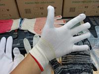 Găng tay Công nghiệp