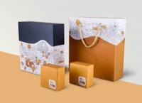 Túi giấy thiết kế