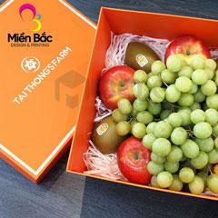 In hộp cứng đựng hoa quả