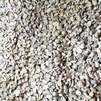 Hạt cafe nhân Arabica vỏ lụa Cầu Đất
