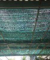 Lưới che nắng sợi thái lan