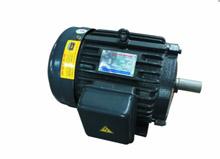 Động cơ điện 1HP- 3HP kiểu DL