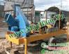 Máy băm gỗ di động